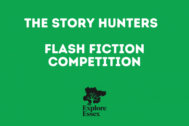 link through page to Story Hunters Competition